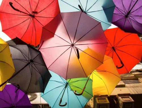 vie en couleur